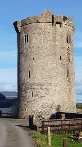 Ballynahow Castle